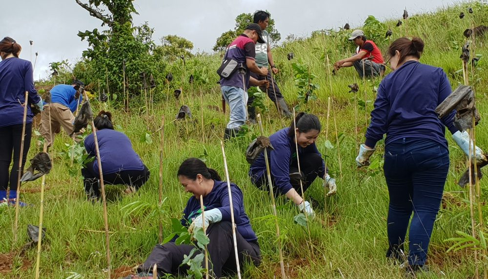 Fostering Education & Environment for Development, Inc. (FEED)
